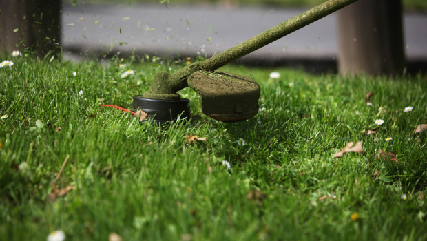 String trimmer care 101