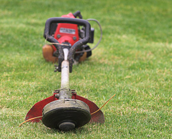 Maintenance tips for your string trimmer